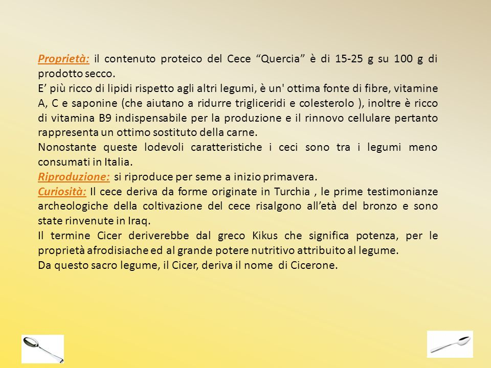 Proprietà: il contenuto proteico del Cece Quercia è di 15-25 g su 100 g di prodotto secco.
