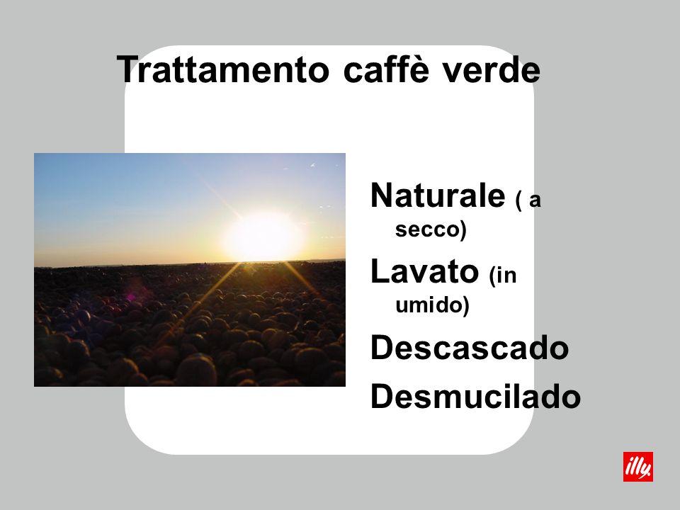 Trattamento caffè verde