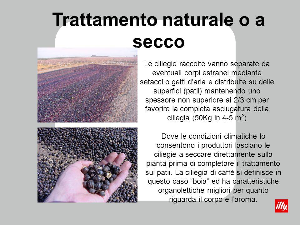 Trattamento naturale o a secco