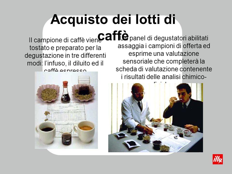 Acquisto dei lotti di caffè