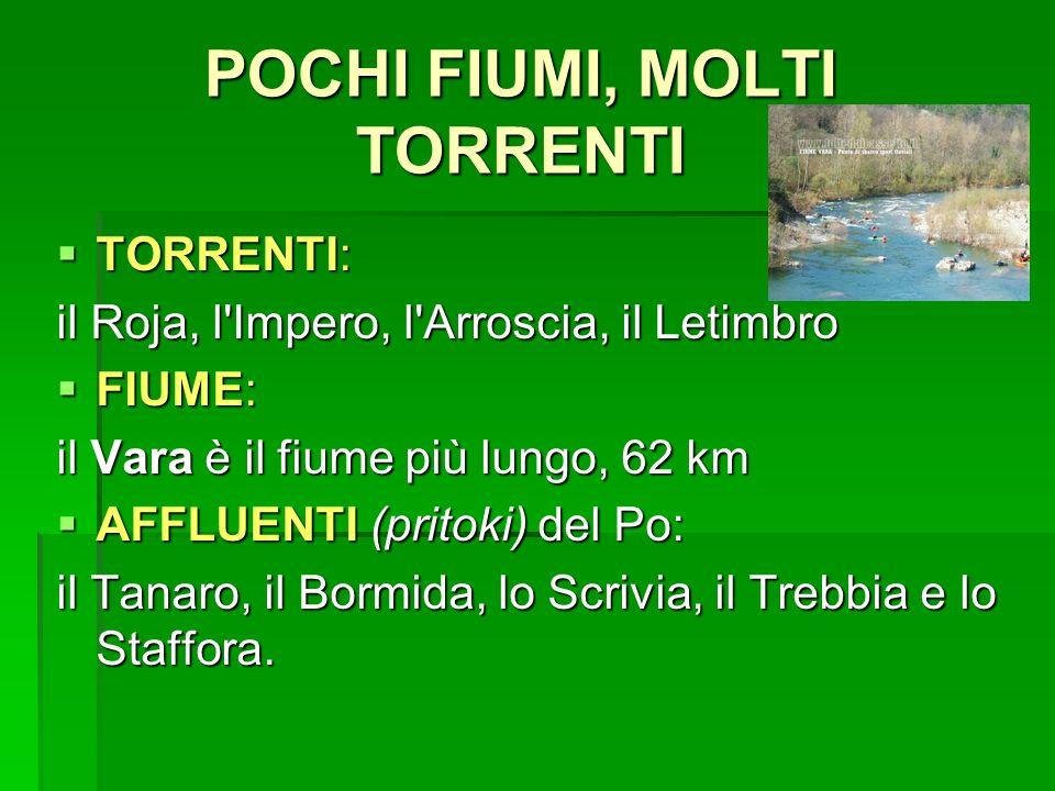 POCHI FIUMI, MOLTI TORRENTI
