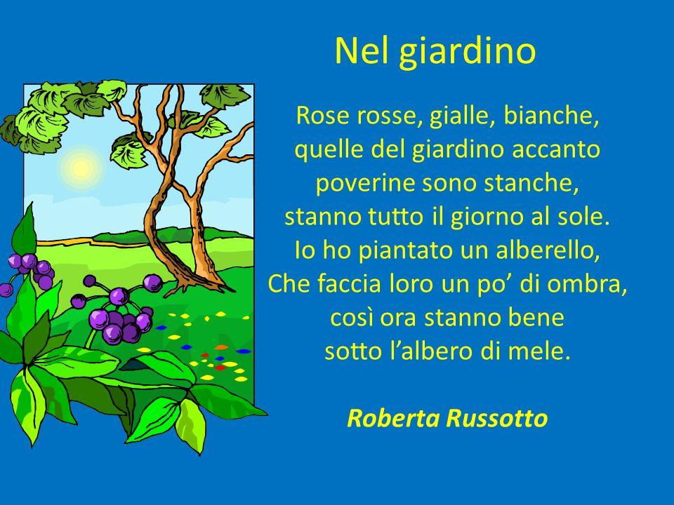 Nel giardino Rose rosse, gialle, bianche, quelle del giardino accanto