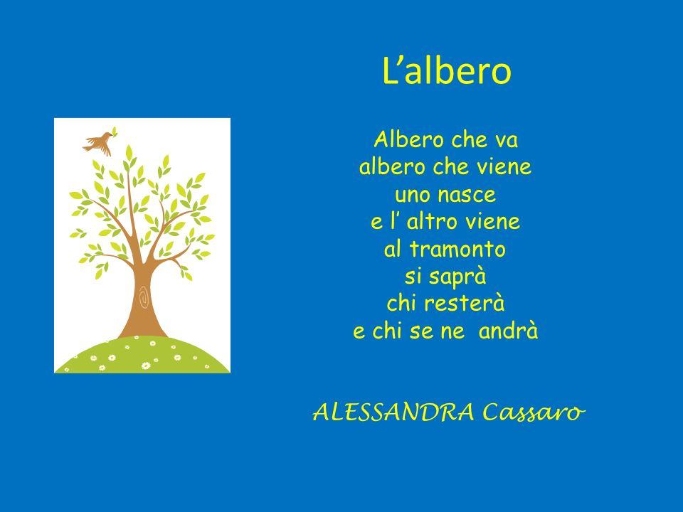 L'albero Albero che va albero che viene uno nasce e l' altro viene