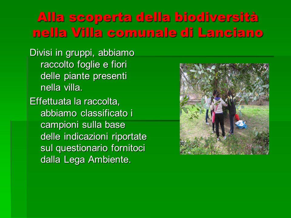 Alla scoperta della biodiversità nella Villa comunale di Lanciano