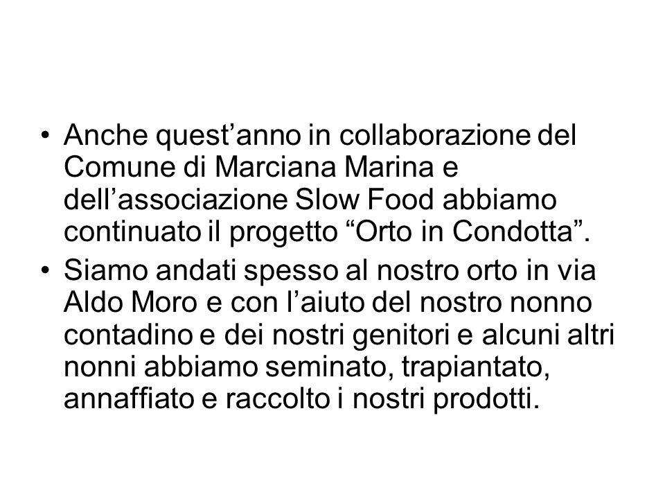 Anche quest'anno in collaborazione del Comune di Marciana Marina e dell'associazione Slow Food abbiamo continuato il progetto Orto in Condotta .