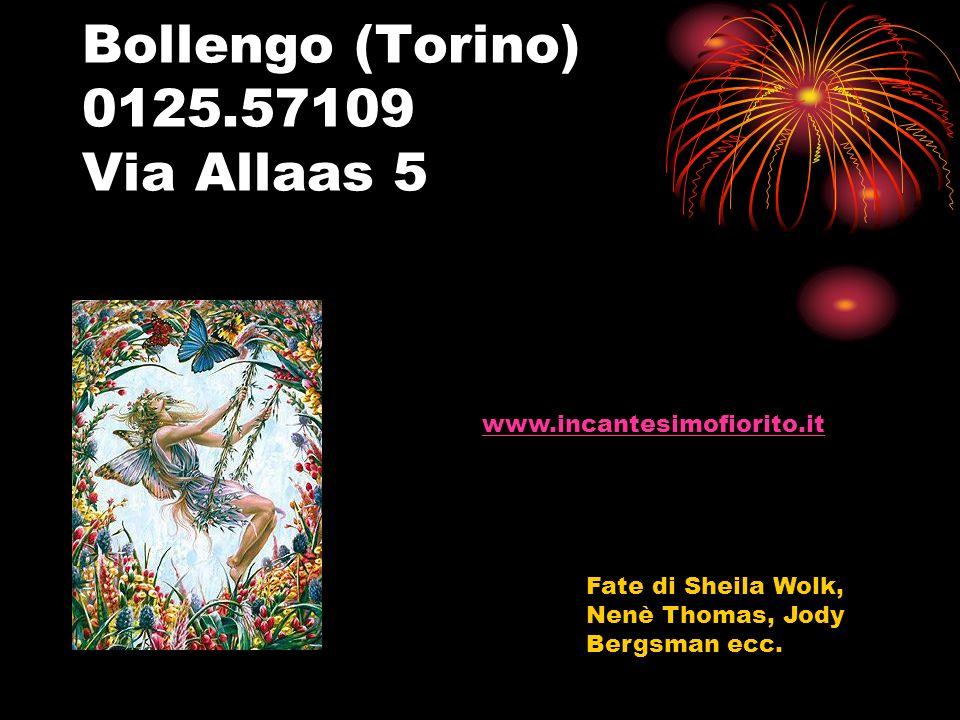 Bollengo (Torino) 0125.57109 Via Allaas 5