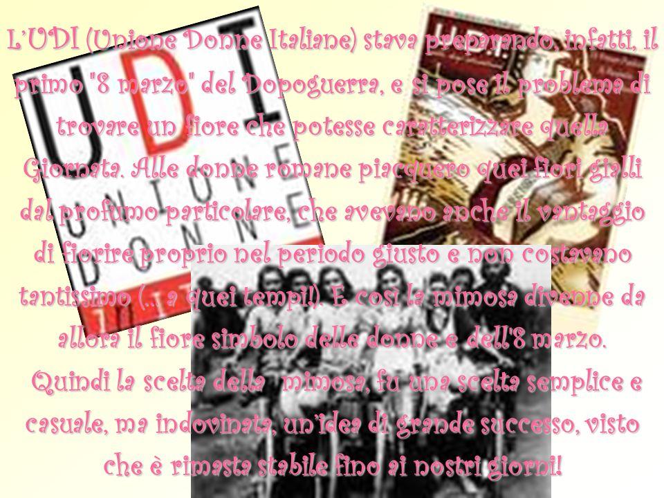 L'UDI (Unione Donne Italiane) stava preparando, infatti, il primo 8 marzo del Dopoguerra, e si pose il problema di trovare un fiore che potesse caratterizzare quella Giornata.