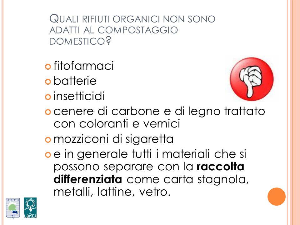 Quali rifiuti organici non sono adatti al compostaggio domestico