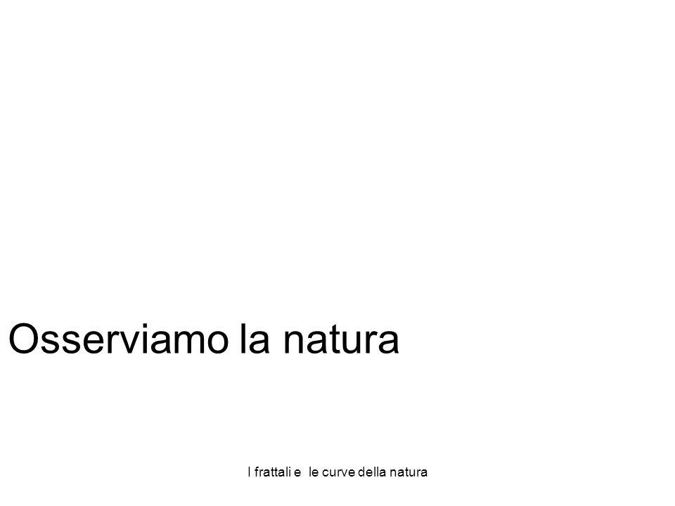 I frattali e le curve della natura