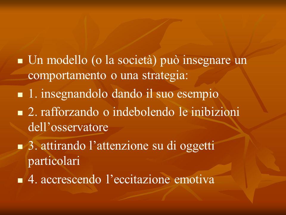 Un modello (o la società) può insegnare un comportamento o una strategia: