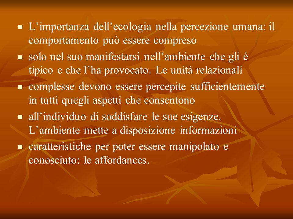 L'importanza dell'ecologia nella percezione umana: il comportamento può essere compreso