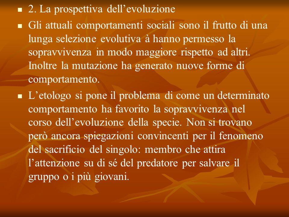 2. La prospettiva dell'evoluzione