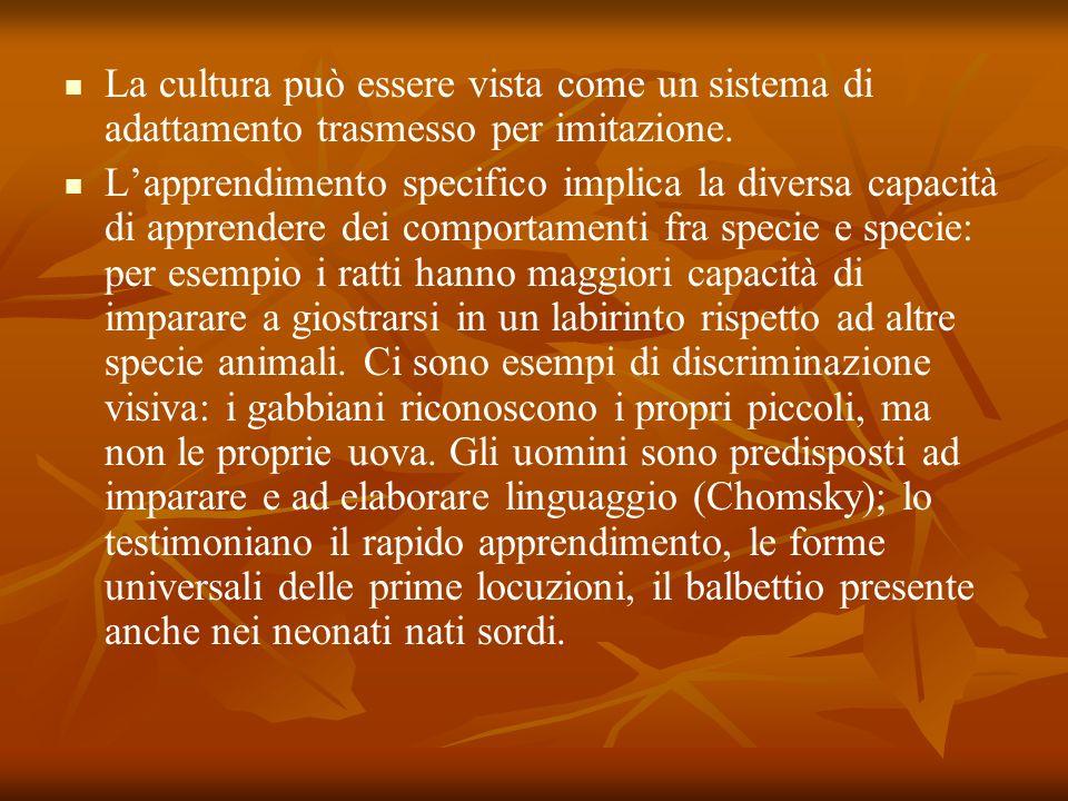 La cultura può essere vista come un sistema di adattamento trasmesso per imitazione.