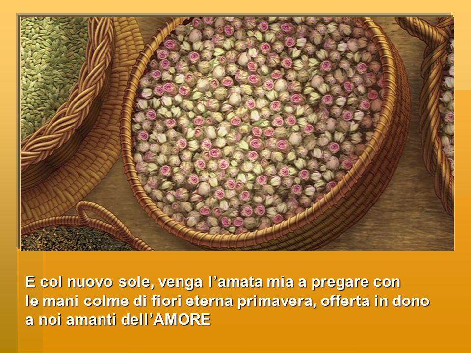 E col nuovo sole, venga l'amata mia a pregare con le mani colme di fiori eterna primavera, offerta in dono a noi amanti dell'AMORE