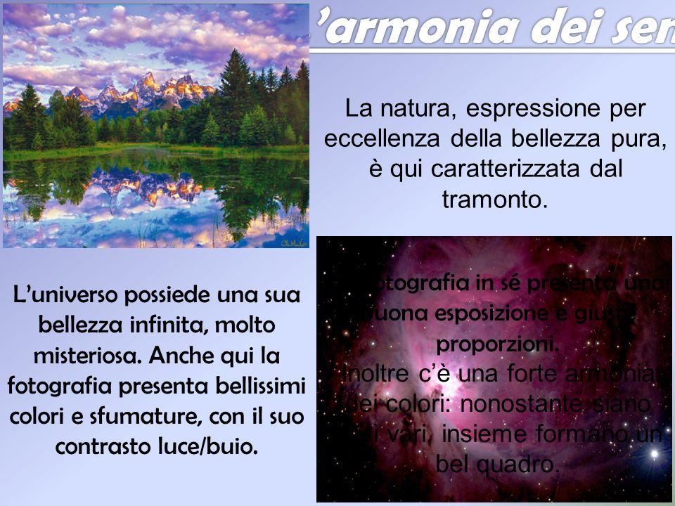 L'armonia dei sensi La natura, espressione per eccellenza della bellezza pura, è qui caratterizzata dal tramonto.