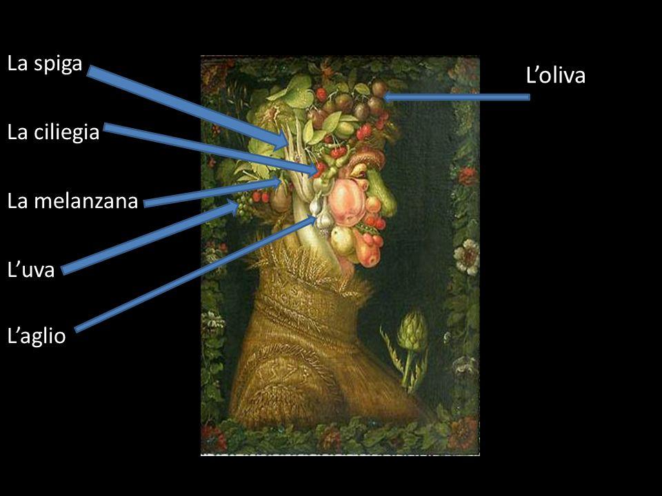 La spiga La ciliegia La melanzana L'uva L'aglio L'oliva