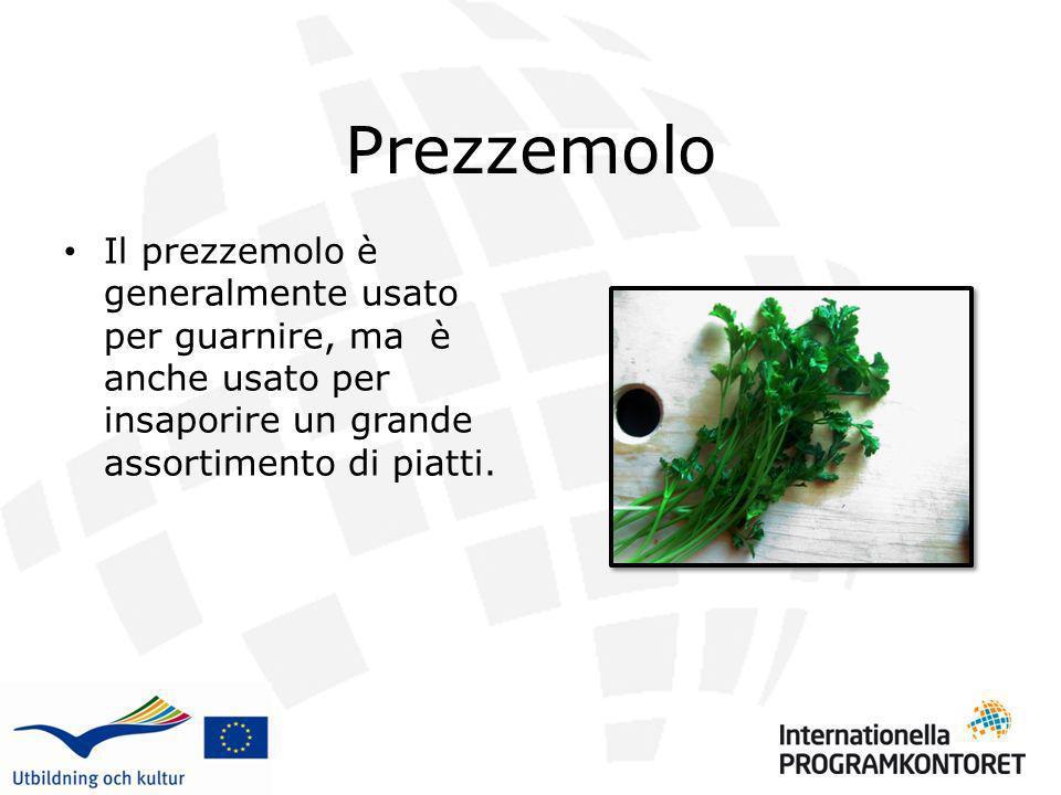 Prezzemolo Il prezzemolo è generalmente usato per guarnire, ma è anche usato per insaporire un grande assortimento di piatti.