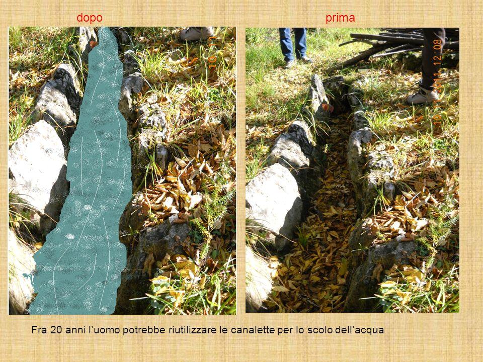 dopo prima Fra 20 anni l'uomo potrebbe riutilizzare le canalette per lo scolo dell'acqua