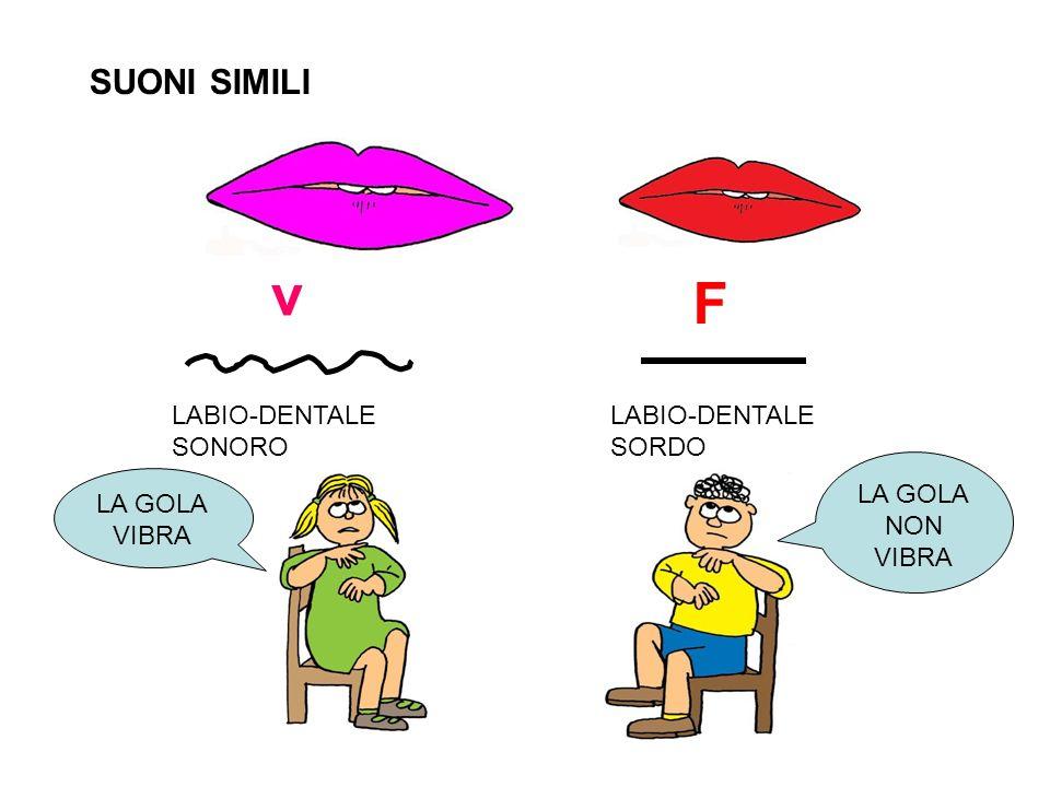 v F SUONI SIMILI LABIO-DENTALE SONORO LABIO-DENTALE SORDO LA GOLA