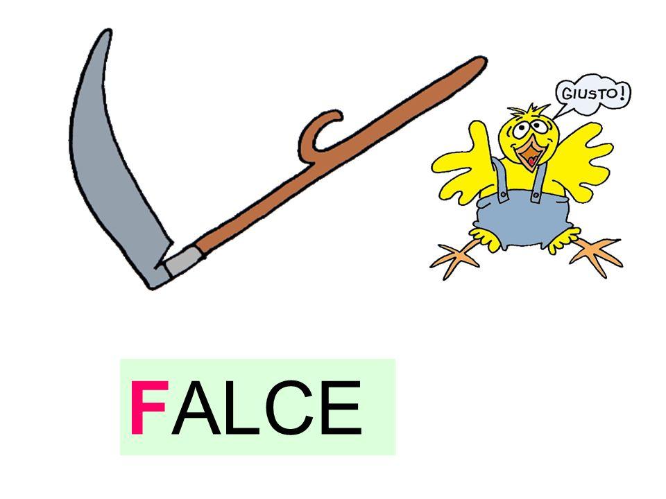 FALCE