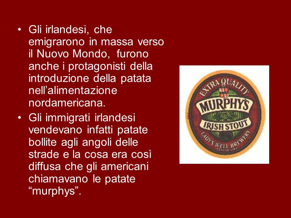 Gli irlandesi, che emigrarono in massa verso il Nuovo Mondo, furono anche i protagonisti della introduzione della patata nell'alimentazione nordamericana.