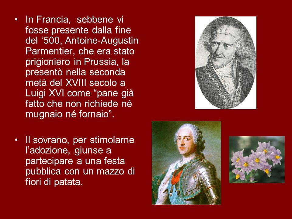 In Francia, sebbene vi fosse presente dalla fine del '500, Antoine-Augustin Parmentier, che era stato prigioniero in Prussia, la presentò nella seconda metà del XVIII secolo a Luigi XVI come pane già fatto che non richiede né mugnaio né fornaio .