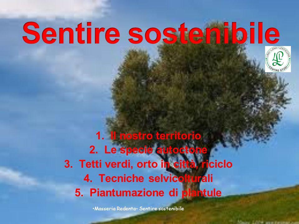 Sentire sostenibile Il nostro territorio Le specie autoctone