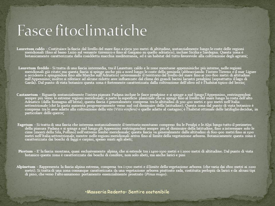 Fasce fitoclimatiche Masseria Redenta- Sentire sostenibile