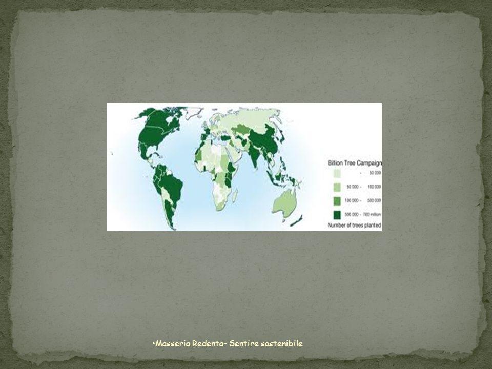 Masseria Redenta- Sentire sostenibile
