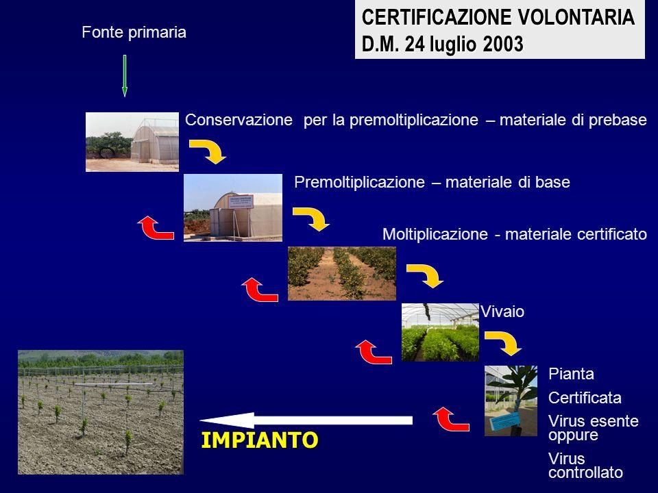 CERTIFICAZIONE VOLONTARIA D.M. 24 luglio 2003