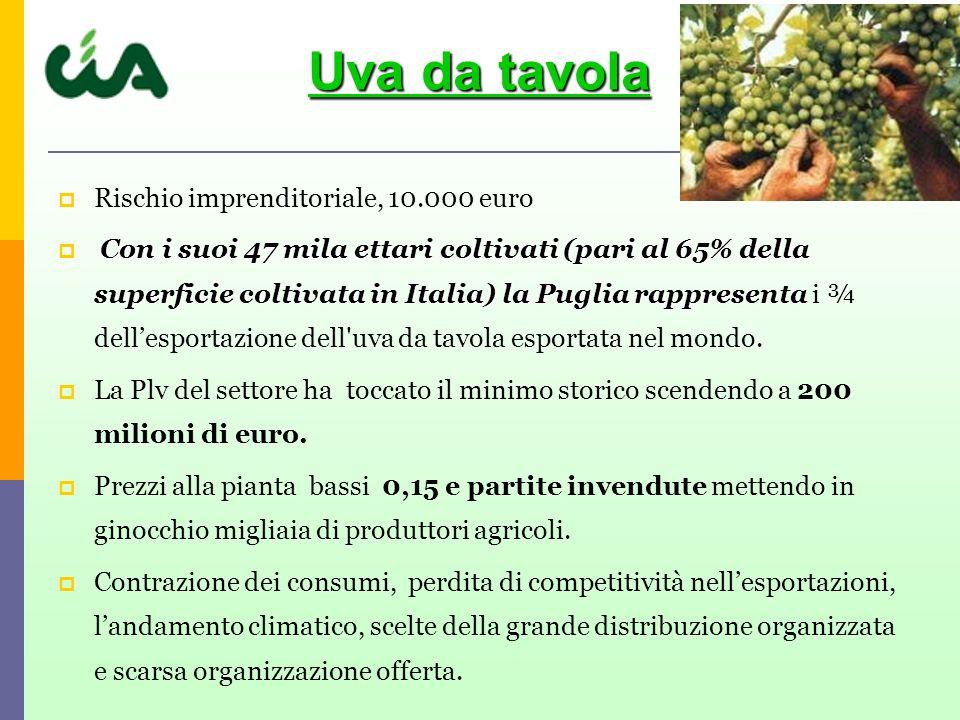 Uva da tavola Rischio imprenditoriale, 10.000 euro
