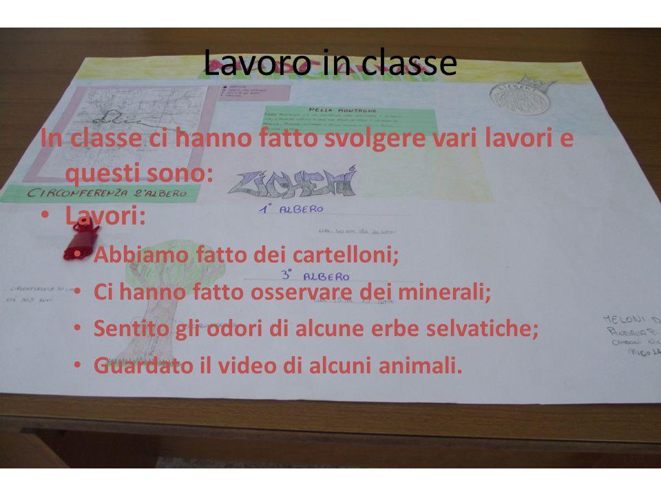 Lavoro in classe In classe ci hanno fatto svolgere vari lavori e questi sono: Lavori: Abbiamo fatto dei cartelloni;