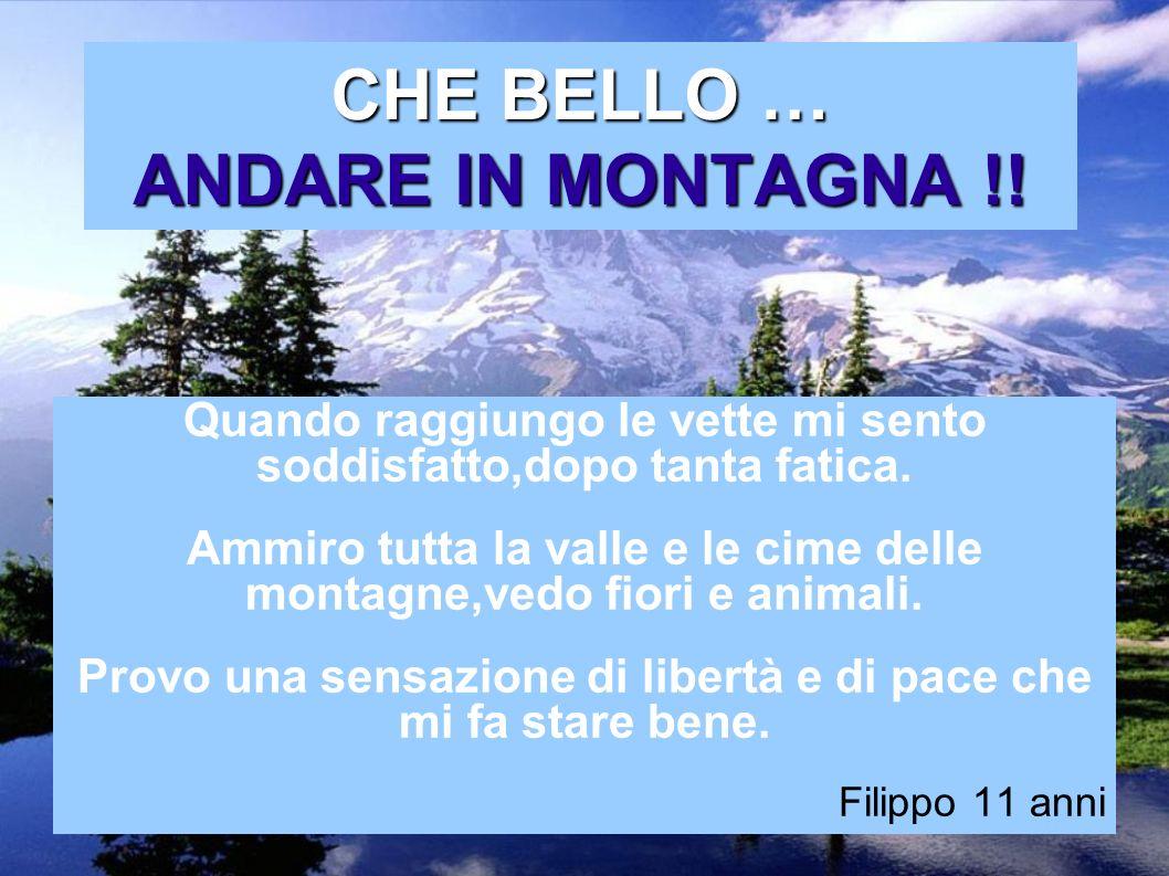 CHE BELLO … ANDARE IN MONTAGNA !!