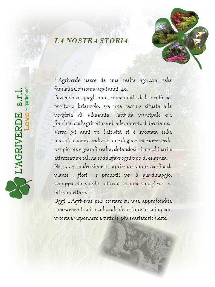 LA NOSTRA STORIA L'Agriverde nasce da una realtà agricola della famiglia Consonni negli anni '40.