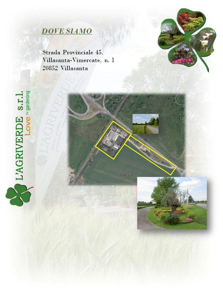 DOVE SIAMO Strada Provinciale 45, Villasanta-Vimercate, n. 1