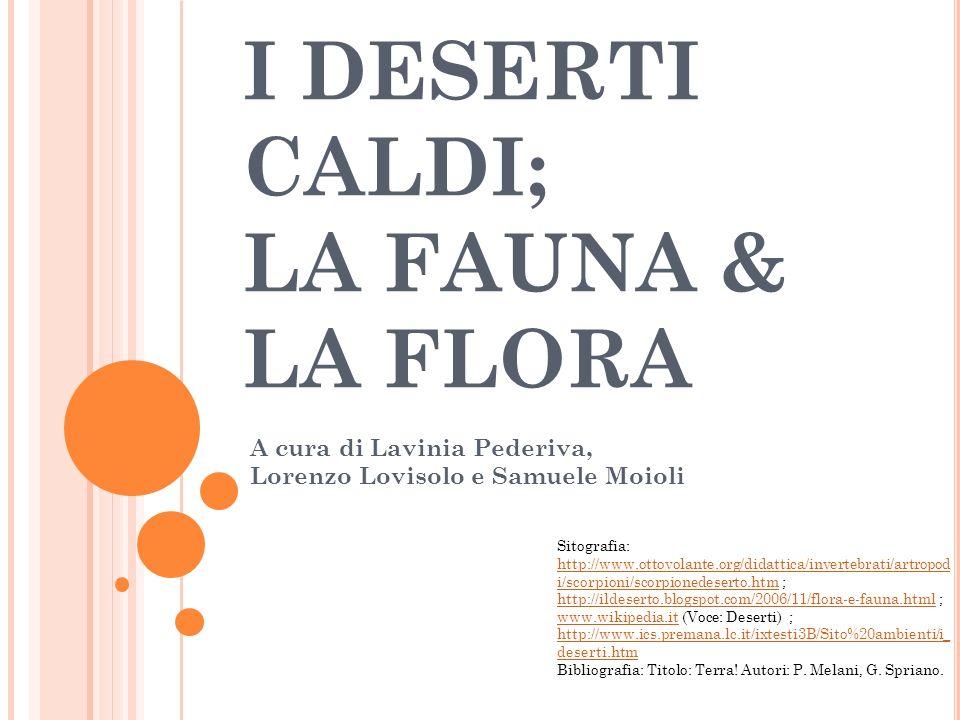 I DESERTI CALDI; LA FAUNA & LA FLORA