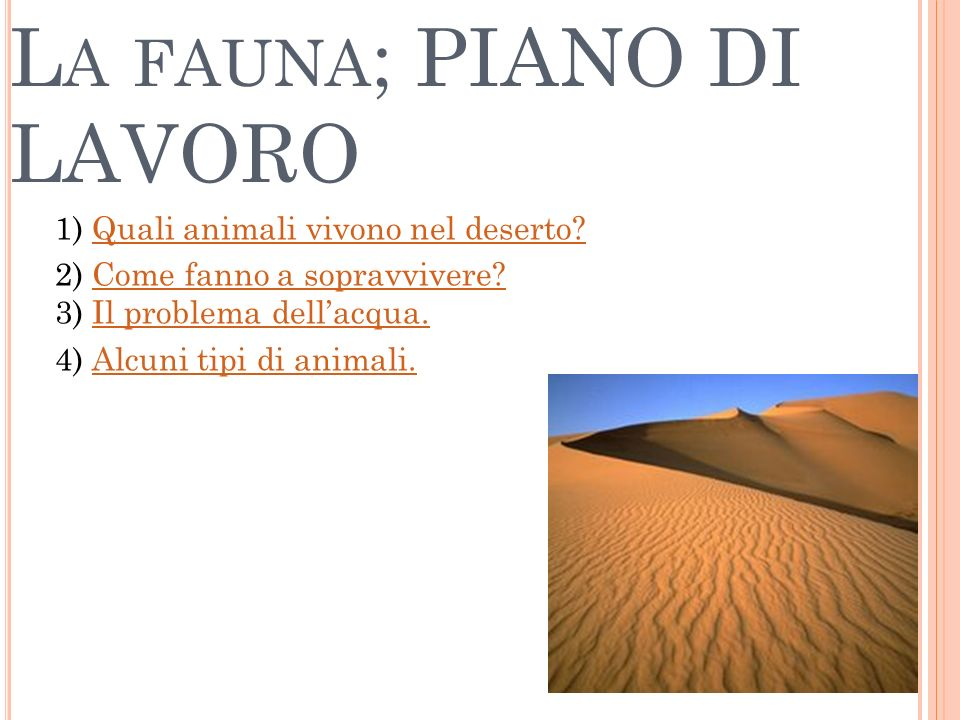 La fauna; PIANO DI LAVORO