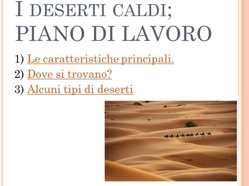 I deserti caldi; PIANO DI LAVORO