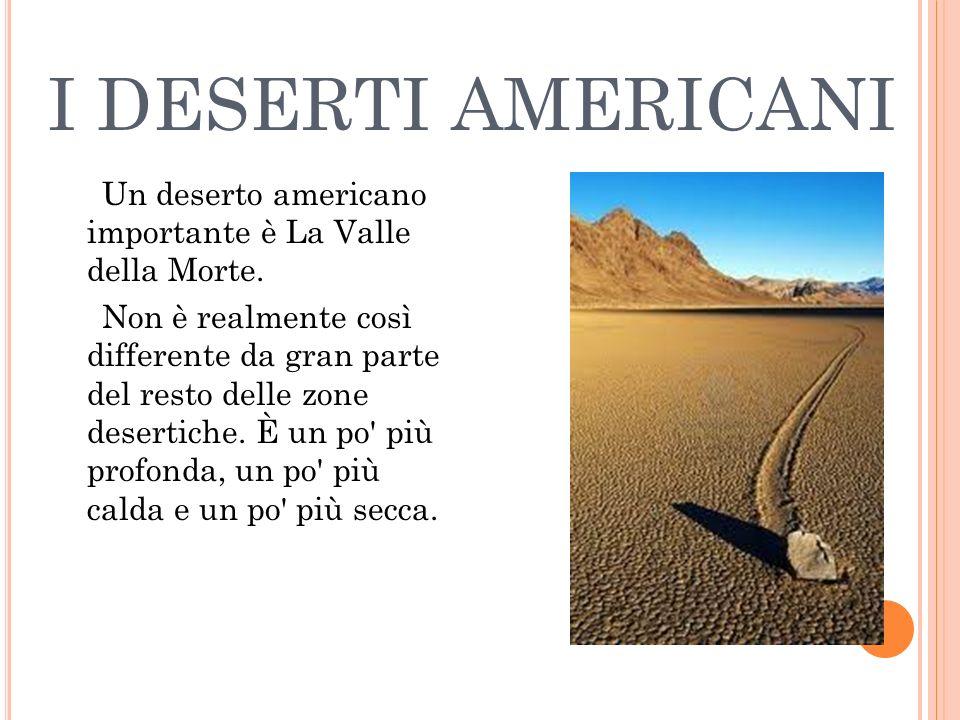 I DESERTI AMERICANI