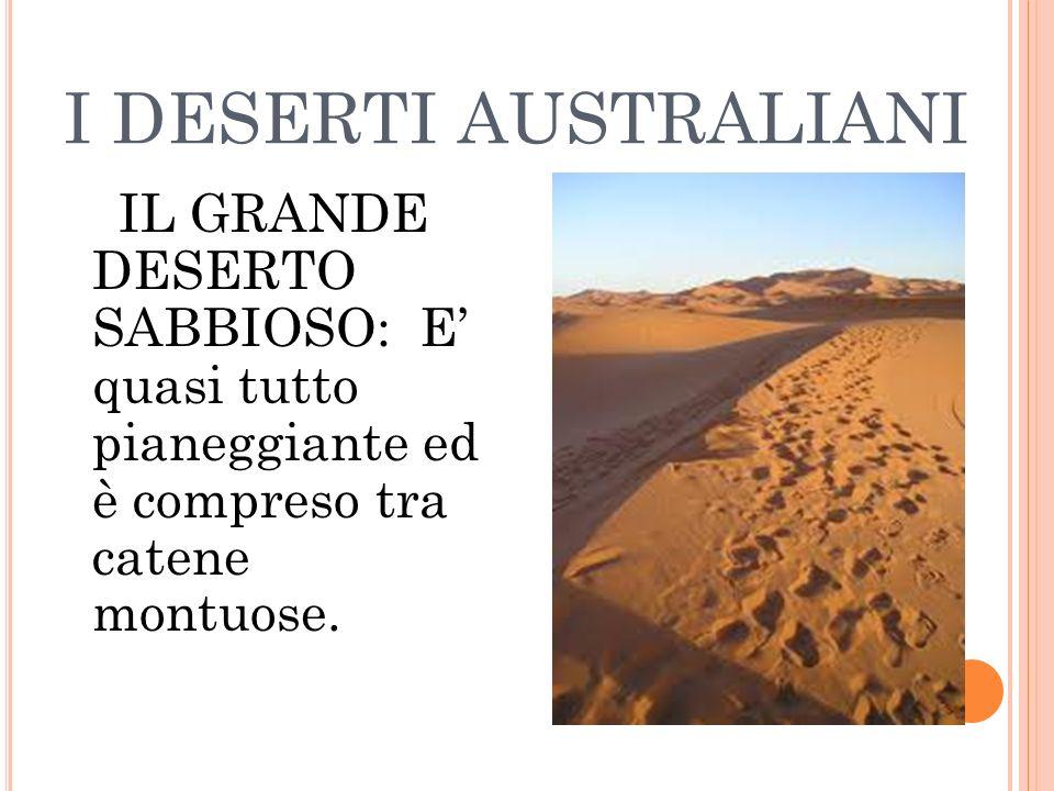 I DESERTI AUSTRALIANI IL GRANDE DESERTO SABBIOSO: E' quasi tutto pianeggiante ed è compreso tra catene montuose.