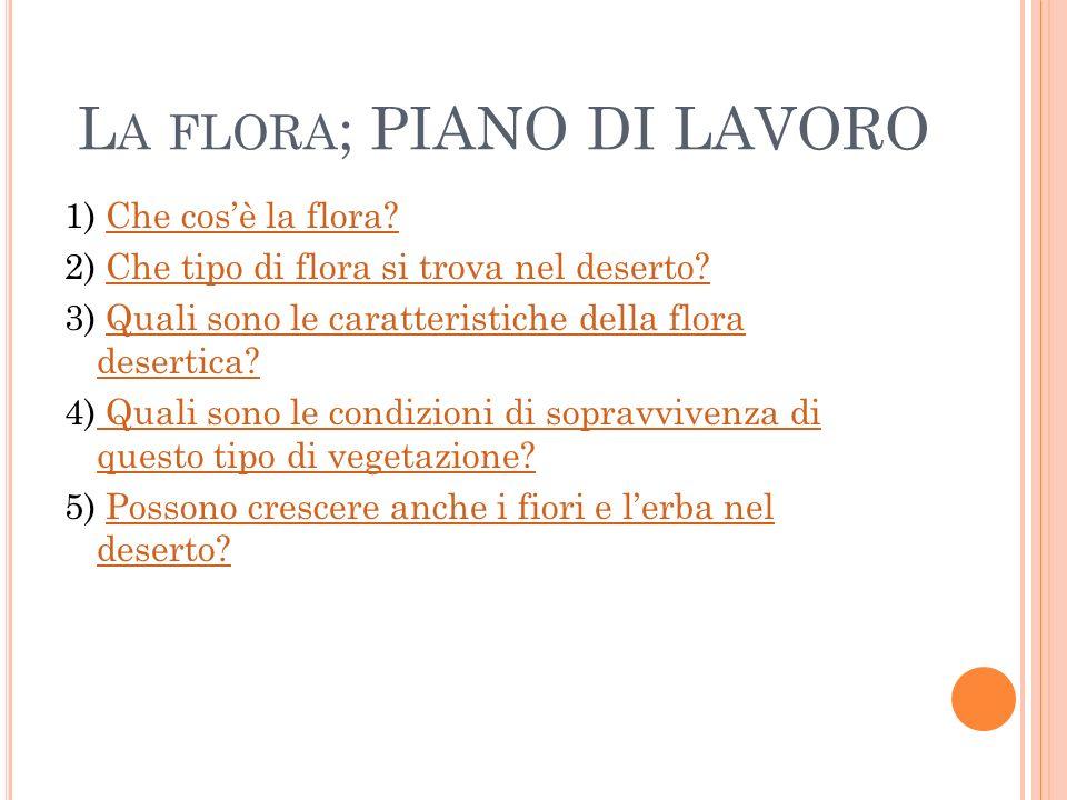 La flora; PIANO DI LAVORO