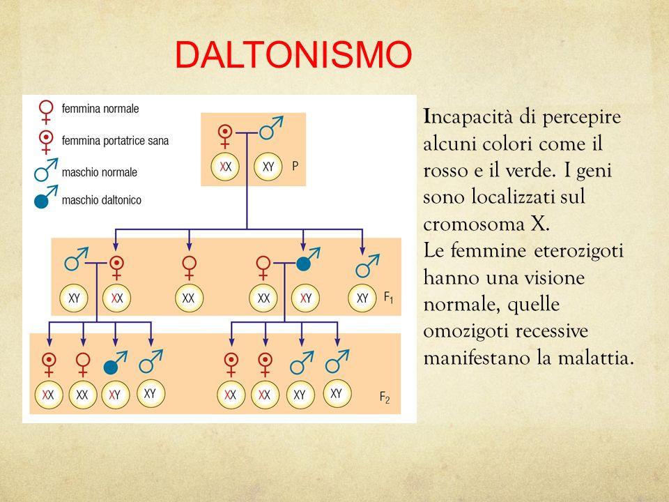 17/08/12 27/11/11. DALTONISMO. Incapacità di percepire alcuni colori come il rosso e il verde. I geni sono localizzati sul cromosoma X.