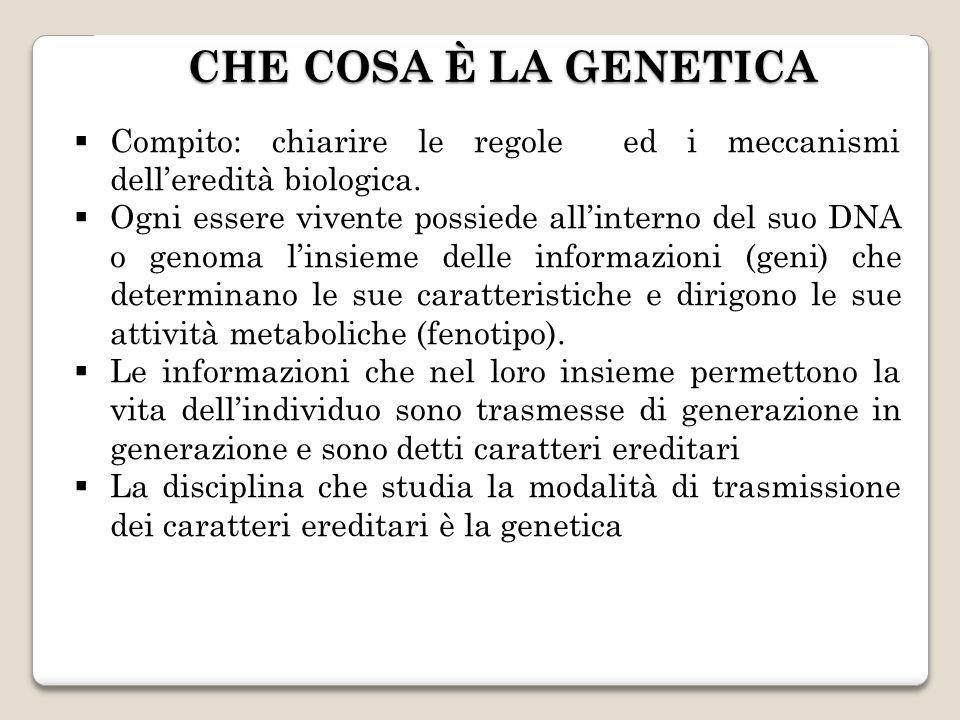 CHE COSA È LA GENETICA Compito: chiarire le regole ed i meccanismi dell'eredità biologica.