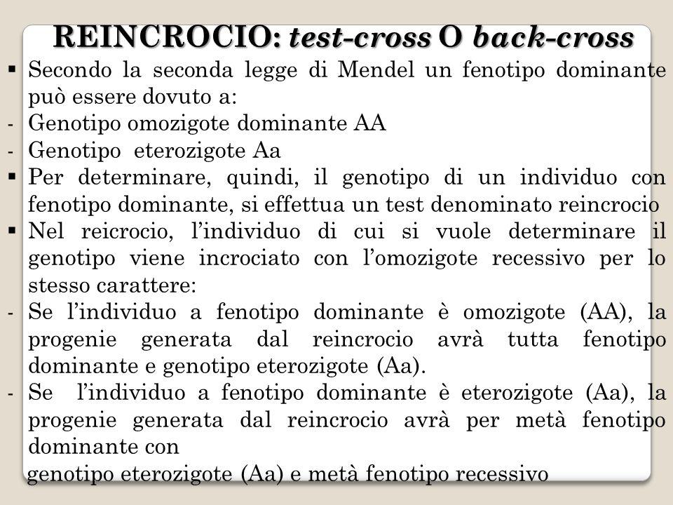 REINCROCIO: test-cross O back-cross