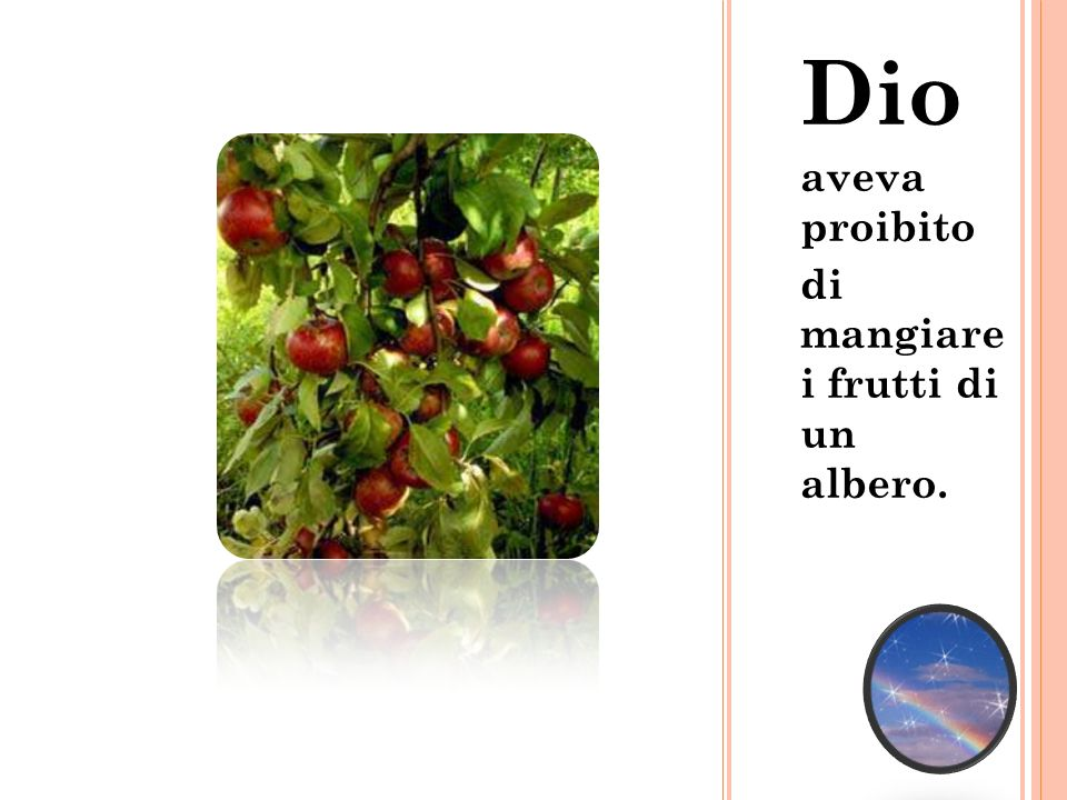 Dio aveva proibito di mangiare i frutti di un albero.