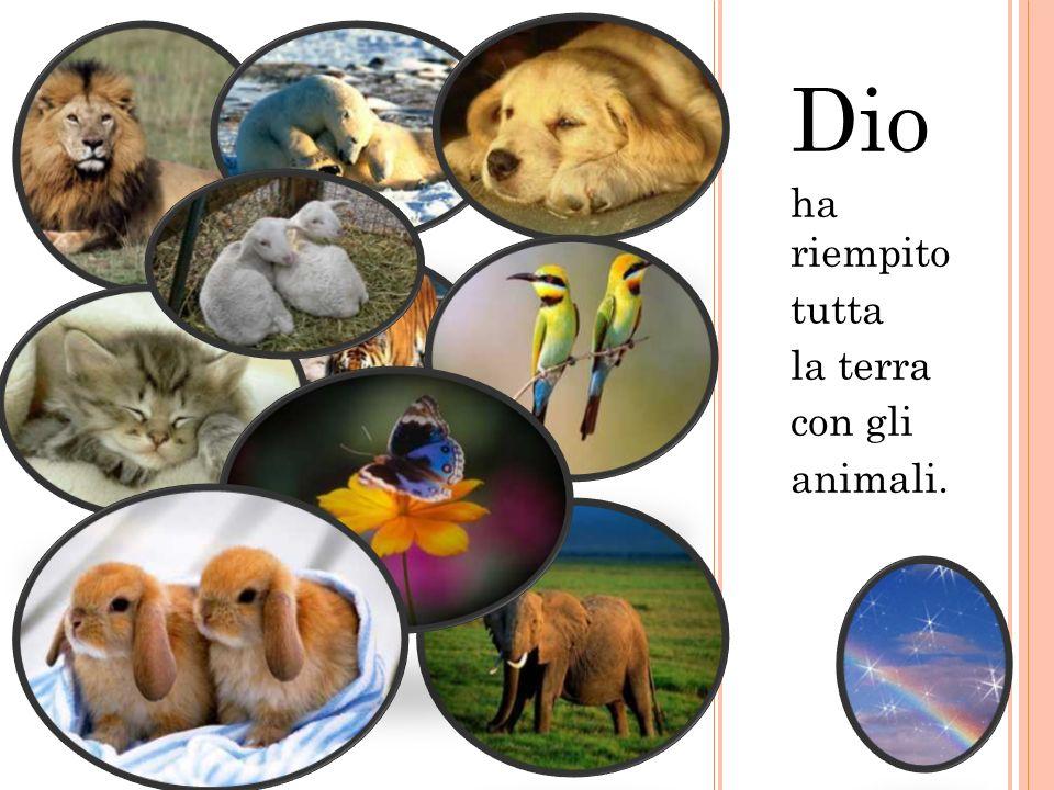 Dio ha riempito tutta la terra con gli animali.