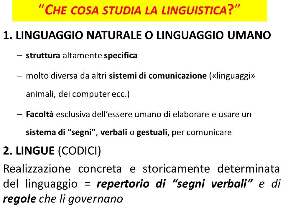 Che cosa studia la linguistica