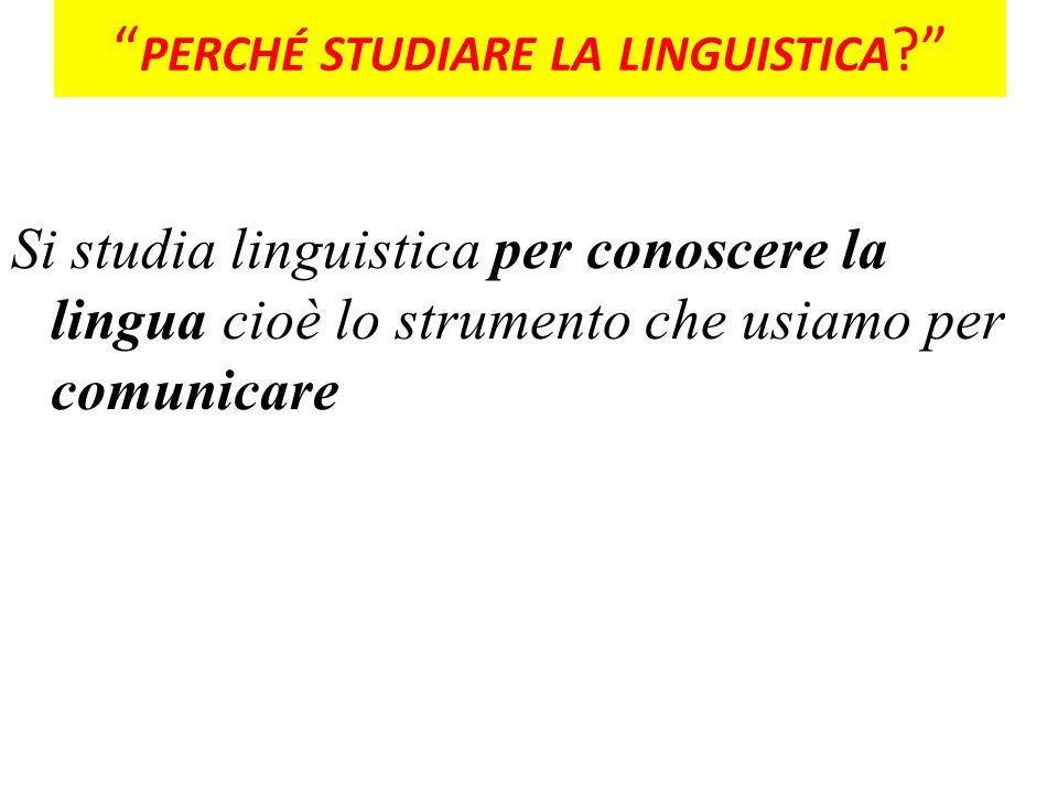 perché studiare la linguistica