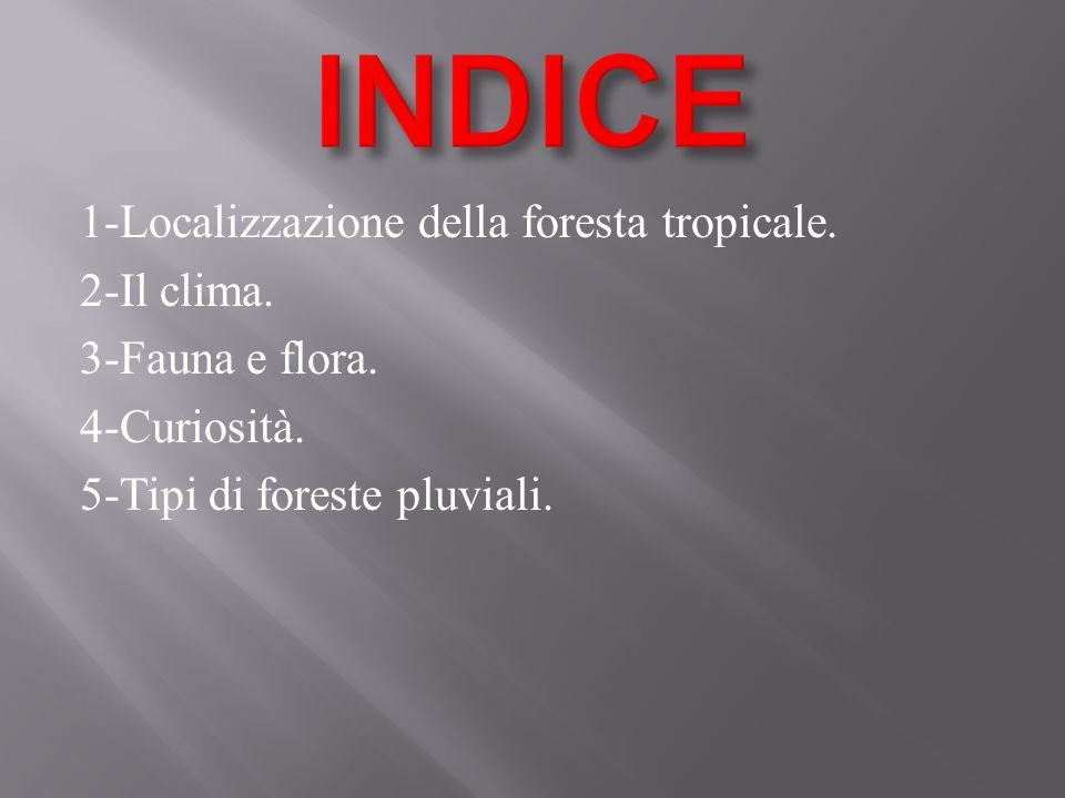 INDICE 1-Localizzazione della foresta tropicale. 2-Il clima.