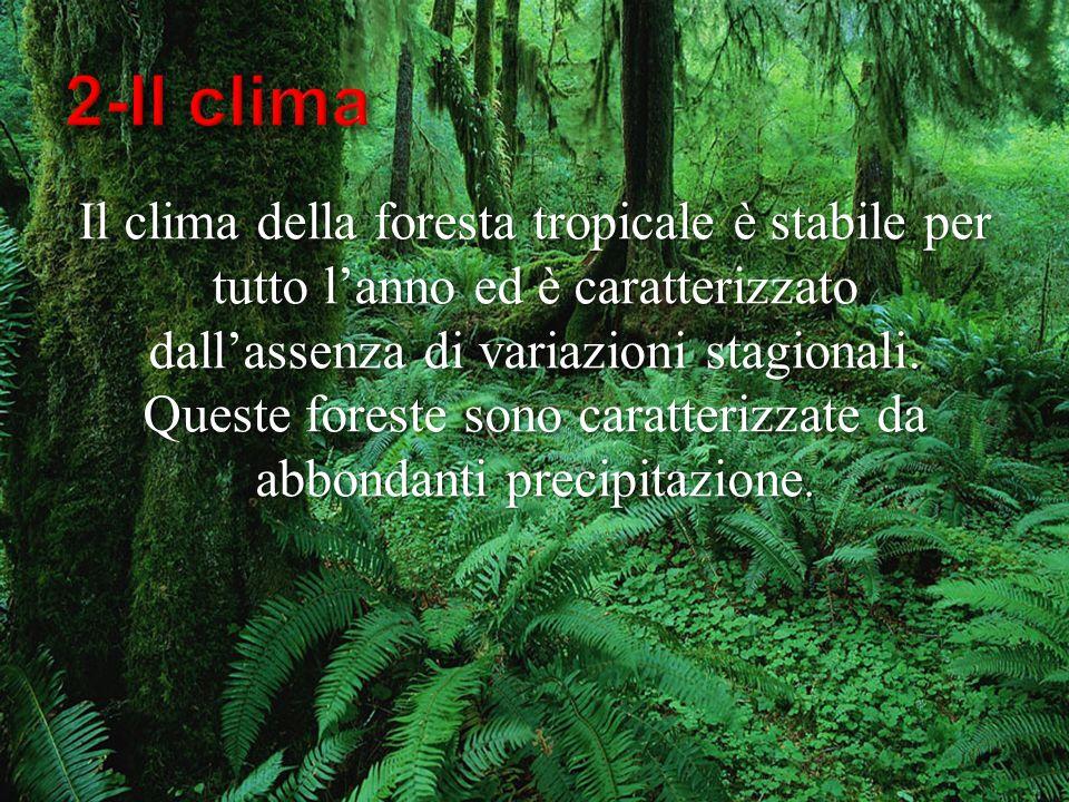 2-Il clima